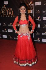 Sreejita De at Golden Petal Awards in Mumbai on 3rd Dec 2012 (160).JPG