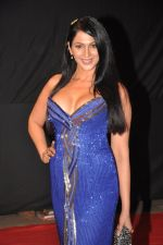 Kalpana Pandit at Big Star Awards red carpet in Mumbai on 16th Dec 2012,1 (12).JPG