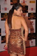 Payal Rohatgi at Big Star Awards red carpet in Mumbai on 16th Dec 2012 (170).JPG