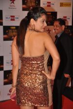 Payal Rohatgi at Big Star Awards red carpet in Mumbai on 16th Dec 2012 (171).JPG
