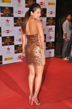 Payal Rohatgi at Big Star Awards red carpet in Mumbai on 16th Dec 2012 (172).JPG
