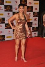 Payal Rohatgi at Big Star Awards red carpet in Mumbai on 16th Dec 2012 (174).JPG