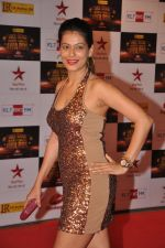 Payal Rohatgi at Big Star Awards red carpet in Mumbai on 16th Dec 2012 (175).JPG
