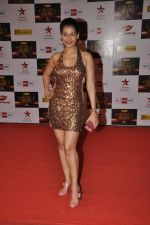 Payal at Big Star Awards red carpet in Mumbai on 16th Dec 2012 (98).JPG