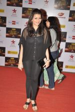 Prachi Shah at Big Star Awards red carpet in Mumbai on 16th Dec 2012 (82).JPG