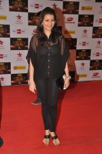Prachi Shah at Big Star Awards red carpet in Mumbai on 16th Dec 2012,1 (32).JPG
