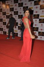 Priyanka Chopra at Big Star Awards red carpet in Mumbai on 16th Dec 2012 (136).JPG