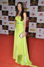 Shamita Singha at Big Star Awards red carpet in Mumbai on 16th Dec 2012 (84).JPG