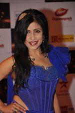 Shibani Kashyap at Big Star Awards red carpet in Mumbai on 16th Dec 2012 (181).JPG