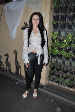 Aanchal Kumar at Lagerbay Chistmas bash hosted by Shakir Sheikh in Bandra, Mumbai on 19th Dec 2012 (74).JPG