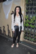 Aanchal Kumar at Lagerbay Chistmas bash hosted by Shakir Sheikh in Bandra, Mumbai on 19th Dec 2012 (75).JPG