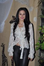 Aanchal Kumar at Lagerbay Chistmas bash hosted by Shakir Sheikh in Bandra, Mumbai on 19th Dec 2012 (76).JPG