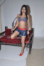 Bikini shoot for a calendar to protest recent Delhi rape case in Andheri, Mumbai on 19th Dec 2012 (17).JPG