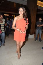 Bipasha Basu announced as the CCL_s brand ambassador in Novotel, Mumbai on 19th Dec 2012 (9).JPG