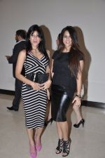 at Playboy bash in Novotel, Mumbai on 19th Dec 2012 (63).JPG