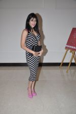 at Playboy bash in Novotel, Mumbai on 19th Dec 2012 (66).JPG