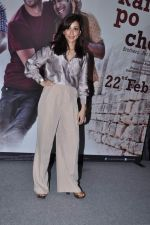 Amrita Puri at kai po che trailor launch in Cinemax, Mumbai on 20th Dec 2012 (61).JPG