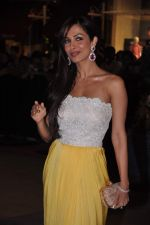 Malaika Arora Khan at Dabangg 2 premiere in PVR, Mumbai on 20th Dec 2012 (32).JPG