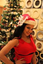 Veena Malik Celebrating Christmas on 20th Dec 2012 (23).JPG