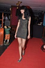 at Maxim Bash in Firangi Paani, Mumbai on 20th Dec 2012 (7).JPG