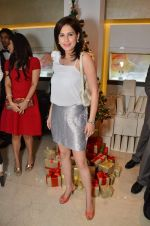 at Zoya Christmas special hosted by Nisha Jamwal in Kemps Corner, Mumbai on 20th Dec 2012 (116).JPG