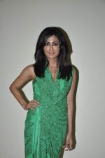 Chitrangada Singh, Arjun Rampal at IIT Mood Indigo in Powai, Mumbai on 23rd Dec 2012 (102).JPG
