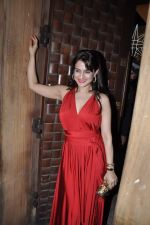 Amisha Patel at Anu and Sunny Dewan_s bash in Mumbai on 24th Dec 2012 (19).JPG
