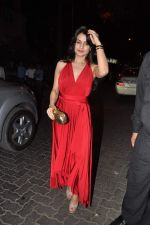 Amisha Patel at Anu and Sunny Dewan_s bash in Mumbai on 24th Dec 2012,1 (259).JPG