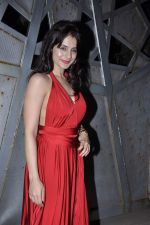 Amisha Patel at Jackky Bhagnanis_s bash in Juhu, Mumbai on 24th Dec 2012 (17).JPG