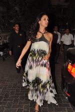Mehr Rampal at Anu and Sunny Dewan_s bash in Mumbai on 24th Dec 2012,1 (218).JPG
