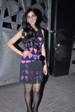 Nishka Lulla at Jackky Bhagnanis_s bash in Juhu, Mumbai on 24th Dec 2012 (6).JPG