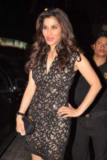 Sophie Chaudhary at Anu and Sunny Dewan_s bash in Mumbai on 24th Dec 2012,1 (274).JPG