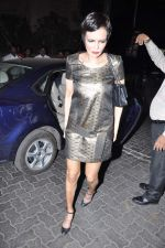 at Anu and Sunny Dewan_s bash in Mumbai on 24th Dec 2012 (9).JPG