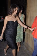 at Anu and Sunny Dewan_s bash in Mumbai on 24th Dec 2012, (54).JPG