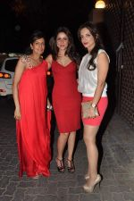 at Anu and Sunny Dewan_s bash in Mumbai on 24th Dec 2012,1 (183).JPG