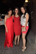 at Anu and Sunny Dewan_s bash in Mumbai on 24th Dec 2012,1 (184).JPG