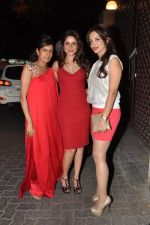at Anu and Sunny Dewan_s bash in Mumbai on 24th Dec 2012,1 (185).JPG