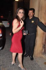 at Anu and Sunny Dewan_s bash in Mumbai on 24th Dec 2012,1 (199).JPG