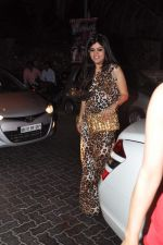 at Anu and Sunny Dewan_s bash in Mumbai on 24th Dec 2012,1 (205).JPG