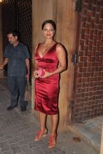 at Anu and Sunny Dewan_s bash in Mumbai on 24th Dec 2012,1 (223).JPG