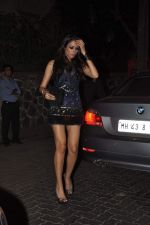 at Anu and Sunny Dewan_s bash in Mumbai on 24th Dec 2012,1 (237).JPG