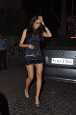 at Anu and Sunny Dewan_s bash in Mumbai on 24th Dec 2012,1 (238).JPG