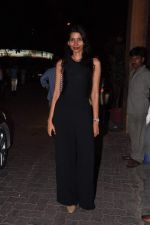 at Anu and Sunny Dewan_s bash in Mumbai on 24th Dec 2012,1 (259).JPG