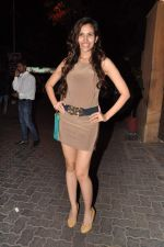 at Anu and Sunny Dewan_s bash in Mumbai on 24th Dec 2012,1 (304).JPG