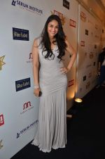 at red carpet of Hello Hall of Fame Awards in Mumbai on 27th Dec 2012 (30).JPG