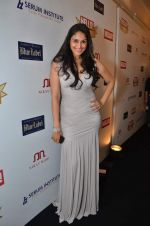at red carpet of Hello Hall of Fame Awards in Mumbai on 27th Dec 2012 (31).JPG