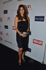 at red carpet of Hello Hall of Fame Awards in Mumbai on 27th Dec 2012 (68).JPG