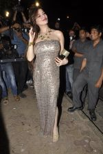 at Bunty Walia_s wedding reception bash in Olive on 28th Dec 2012 (71).JPG