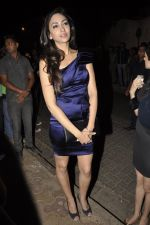 at Bunty Walia_s wedding reception bash in Olive on 28th Dec 2012 (79).JPG