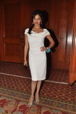 Pooja Kumar at Vishwaroop promotions with Videocon in J W Marriott, Mumbai on 4th Jan 2013 (55).JPG